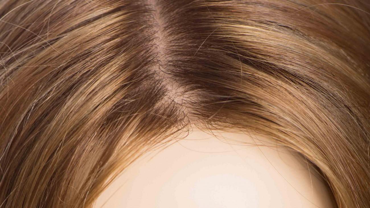 Voevodins: авторская технология создания париков